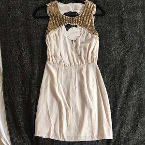 Keepsake Greek goddess dress!
